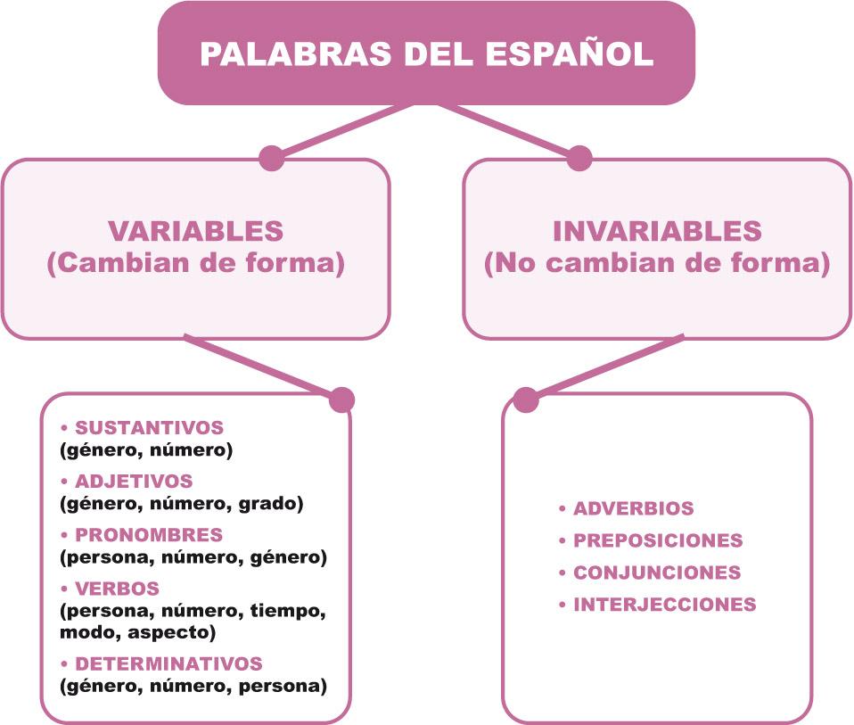 Estudio De La Lengua Palabras Invariables Tirar De La Lengua